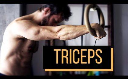 triceps_callisthenie_simon-hamptaux